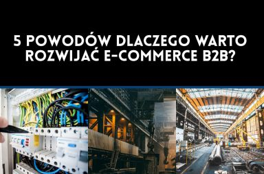 5 powodów dlaczego warto rozwijać e-commerce B2B?