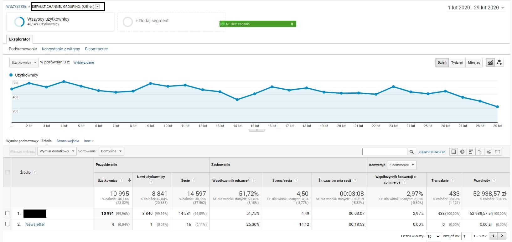 Wyniki sklepu internetowego i kampanii Google Ads - Marzec 2020