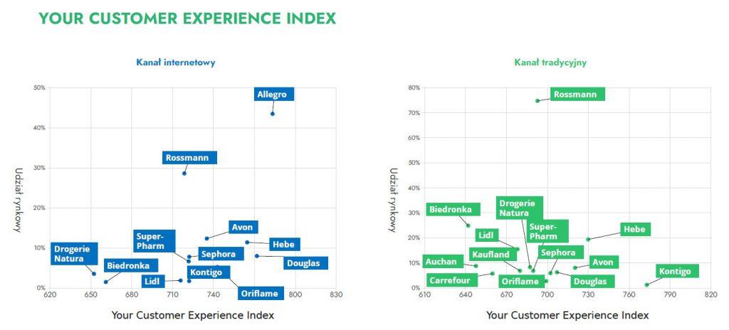 Doświadczenie zakupowe klienta w drogeriach - porównanie matrycy dla Online vs offline